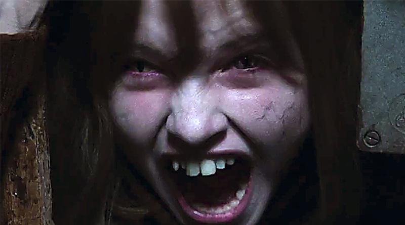 Senior citizen dies in cinema hall while watching horror movie Conjuring-2