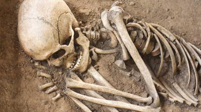 One Arrested In Benachapra Skeleton Issue