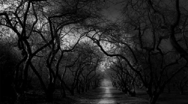 Jharkhand's haunted highway where prayers don't work