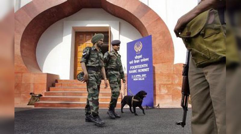 26/11 hero dog Tiger dies in Virar farm