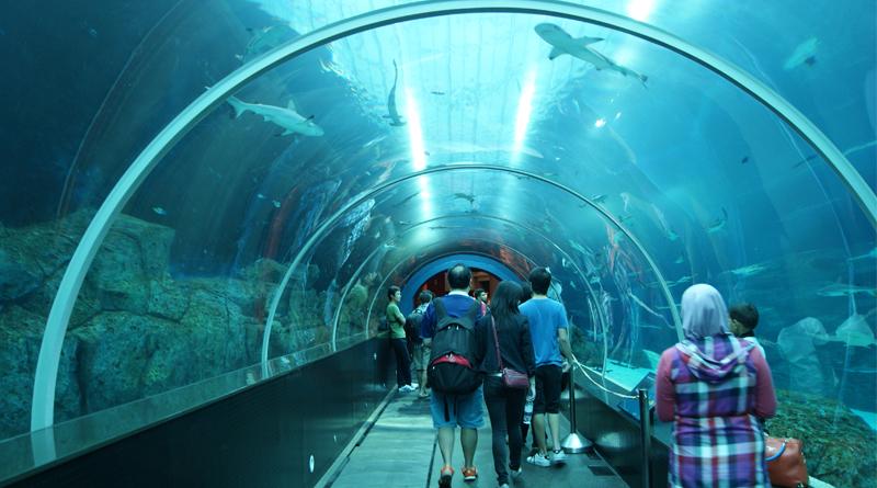Digha To Get It's Tunnel Marine Aqurium