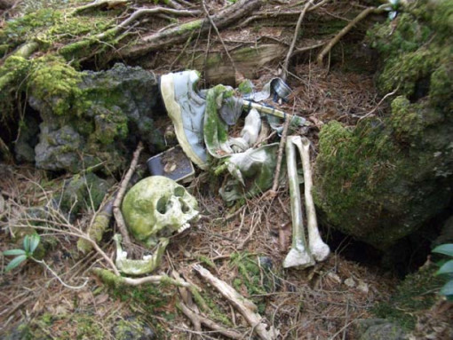 bosque_suicidios_japon