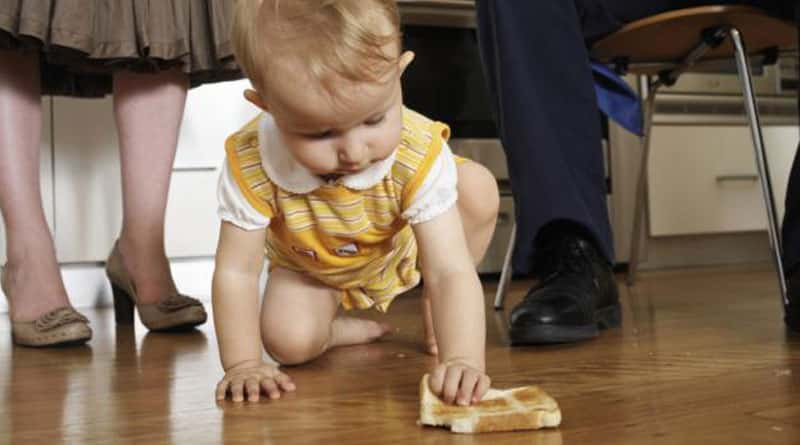 Bacteria transmit to food from floor