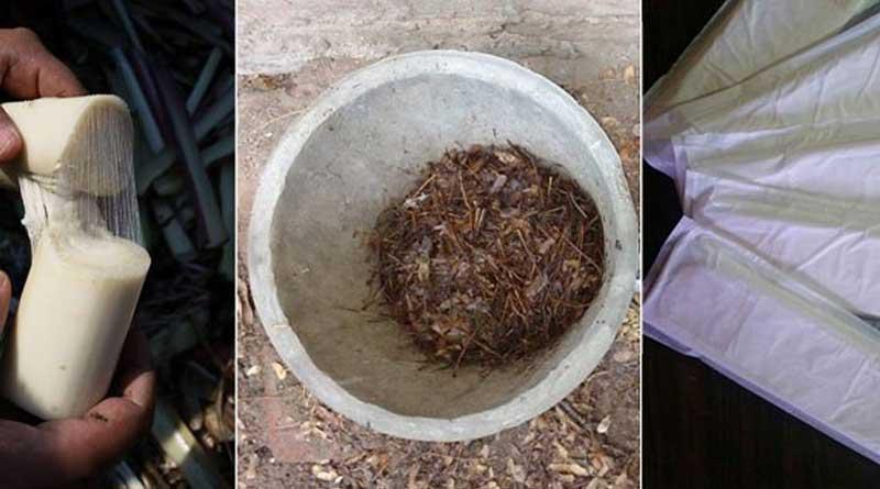Indians created sanitary pad using waste of banana