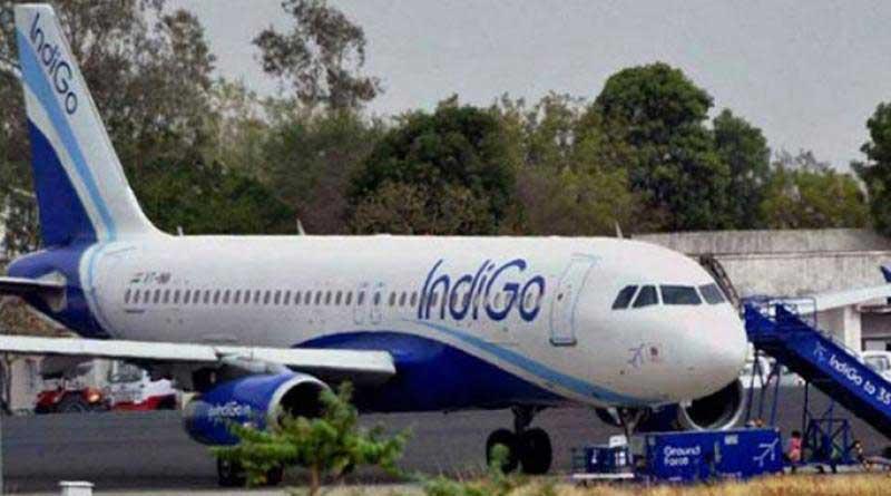 Passenger strips on IndiGo flight, passes derogatory remarks on female crew