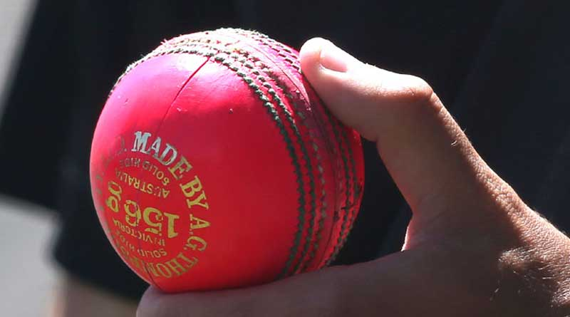 Australia vs Indian Cricket team Test series to start with pink-ball game in Adelaide just after IPL