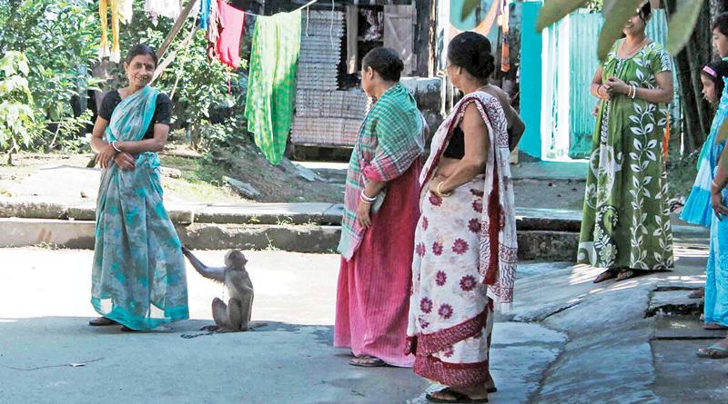 After Taiming Wild Monkey, Dhupguri's Dipali Chakrabarty Becomes Baahubali Boudi
