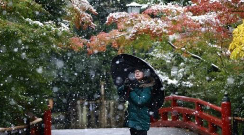 Tokyo sees first November snow in 54 years