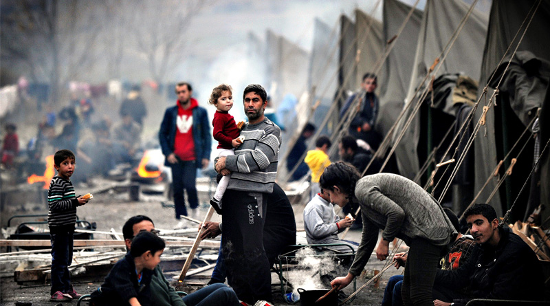 refugee_web
