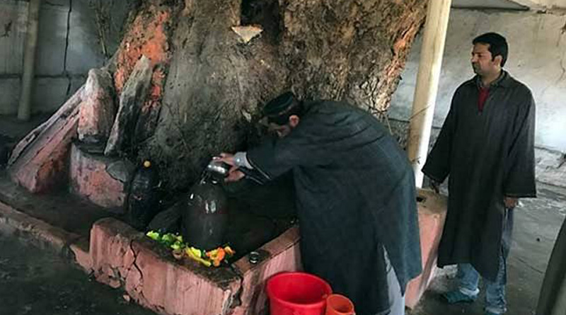 Muslims In Kashmir Celebrate Maha Shivratri, Request Kashmiri Pandits To Come Back Home