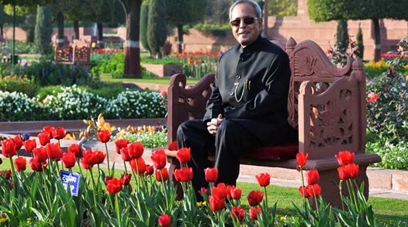 Roses named after Prez, wife to be displayed at Mughal Gardens