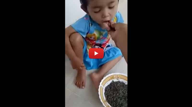 Video of mother feeding toddler worm goes viral