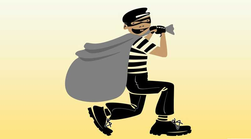 thief_web