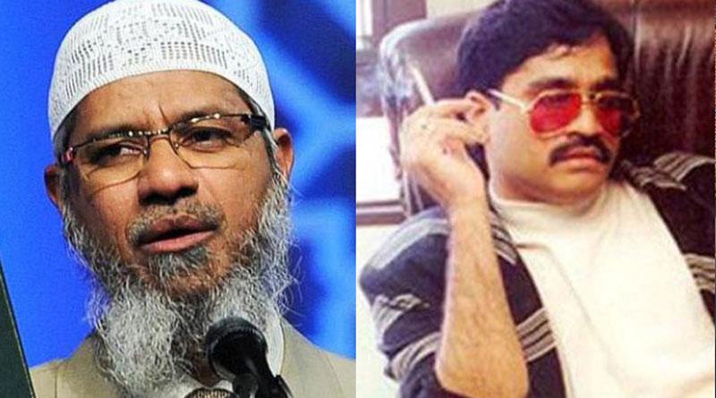 Dawood Ibrahim funded Zakir Naik's NGO through hawala