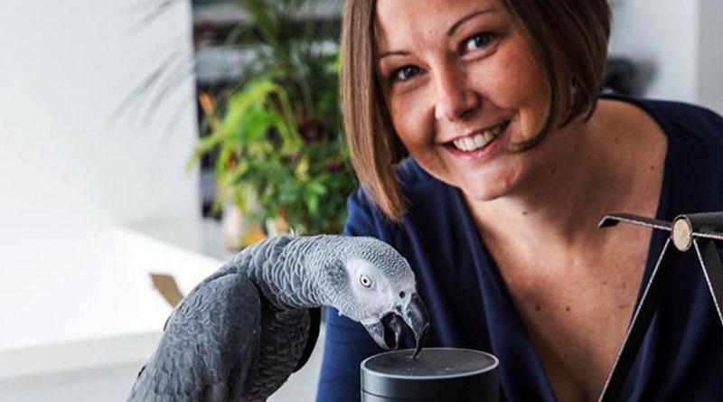 Parrot-Amazon-Web