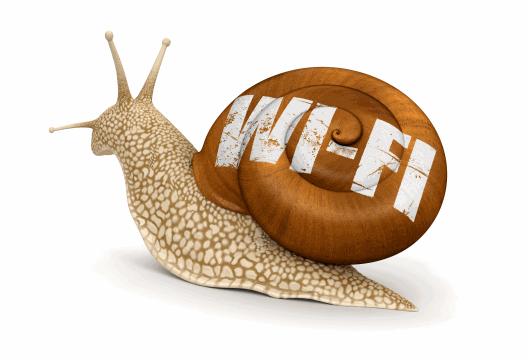 slow-wifi-small