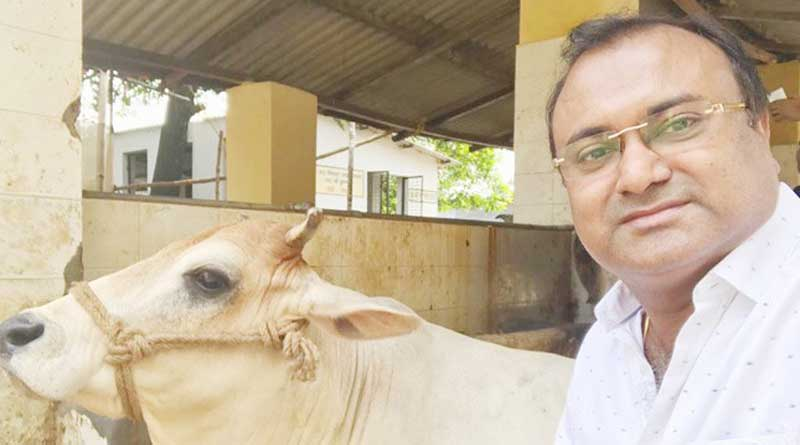 Kolkata NGO launches 'Cowfie' to protect cows