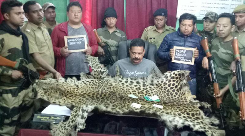 leopard skin trafficking, 2 poachers arrested