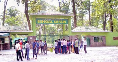 পর্যটক টানতে এবার বেঙ্গল সাফারি পার্কে 'শচীন-সৌরভ' যুগলবন্দি