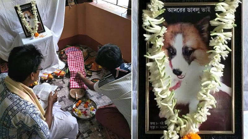 Respect for dog's death at Uluberia