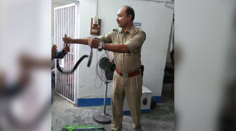 Cops flee as snake invades police station in Dhupguri
