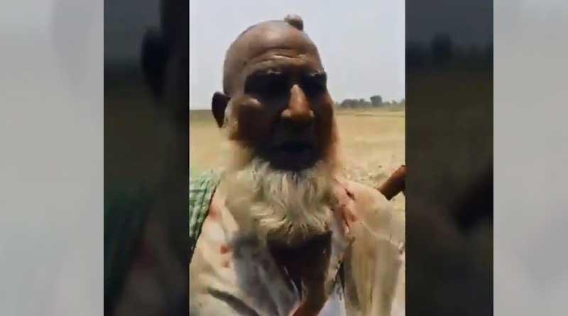 UP: Video depicts cow vigilante attack