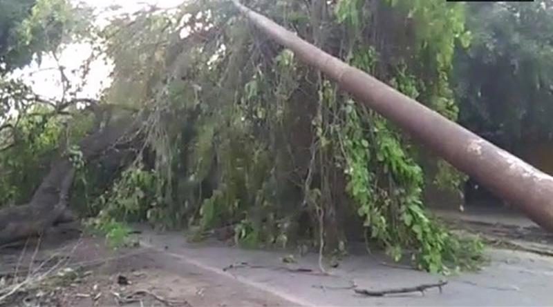 Thunderstorms lash Uttar Pradesh, 17 killed