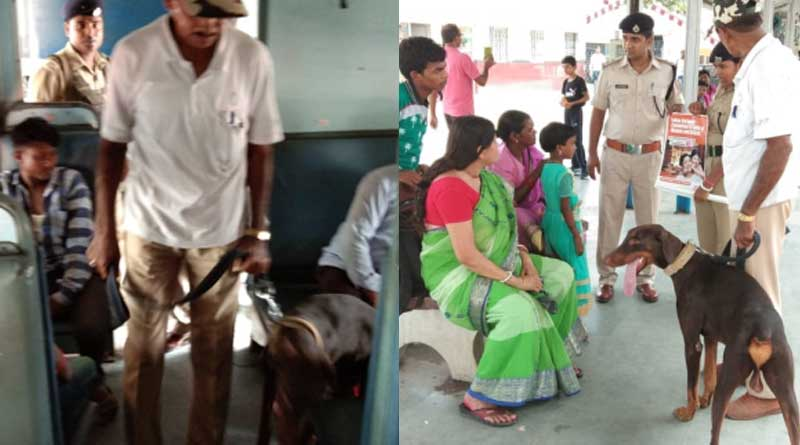 Rail hike the salary of snifer Dogs in Adra division