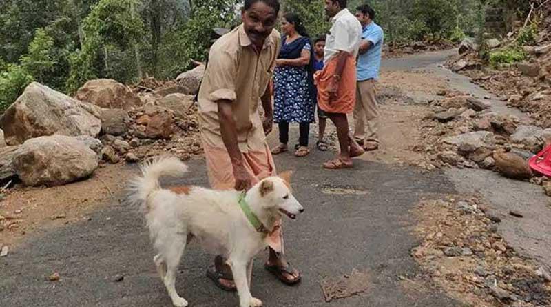 Kerala dog goes viral after saving owners life