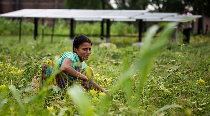 Kushmandi becomes model village