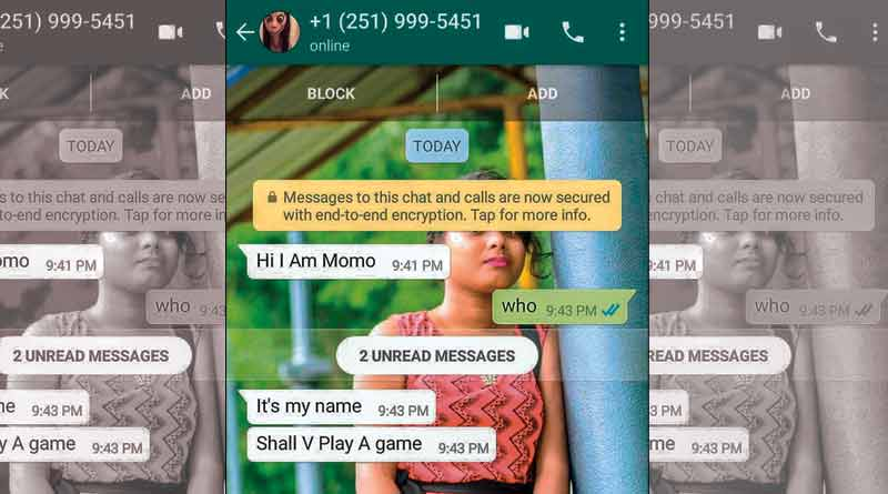 After Blue Whale game, Momo Challenge sparks fear in West Bengal