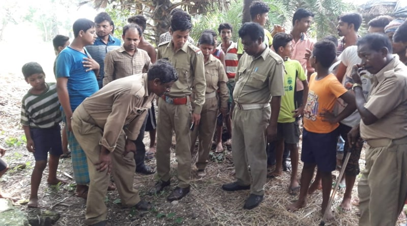 Birbhum: tiger creates panic in Suri