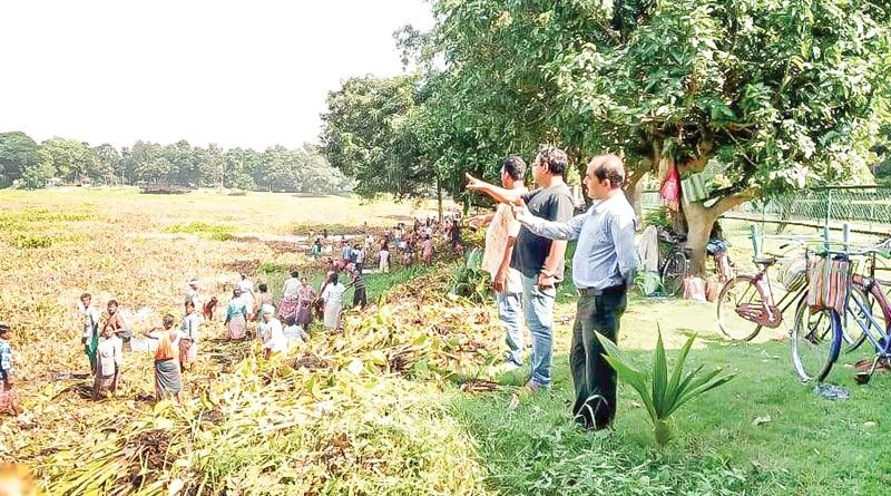 Pesticide kills fish in Burdwan University lake