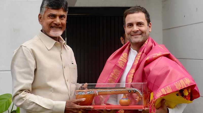We Are Coming Together, Says Rahul Gandhi After Meeting Chandrababu Naidu