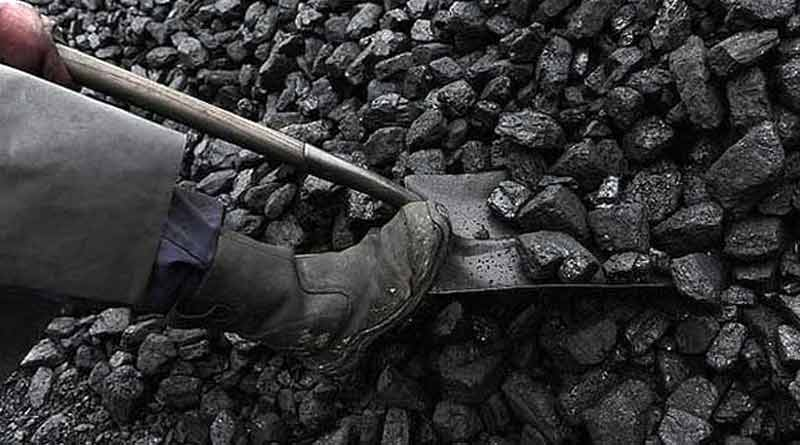 Four died in Nagaland rat-hole mine.