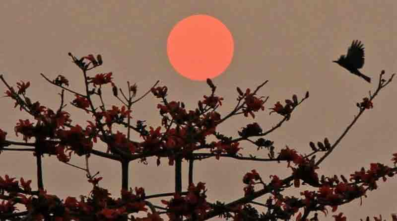 West Bengal welcomes spring