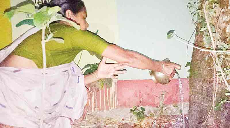 Women around Belda, West Midnapur start worshipping an old tree