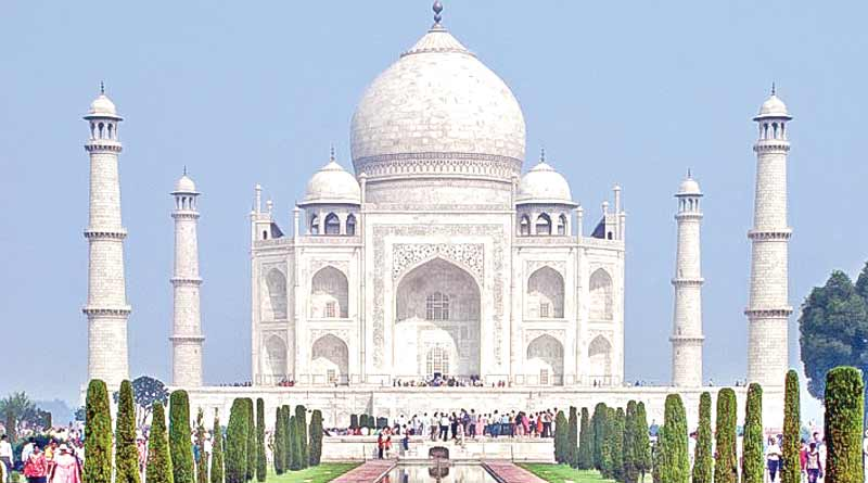 Insects leave black stains on marble structure of Taj Mahal