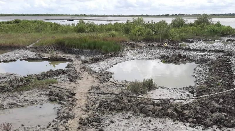 Illegal contruction on the bank of Matla by cutting mangrove