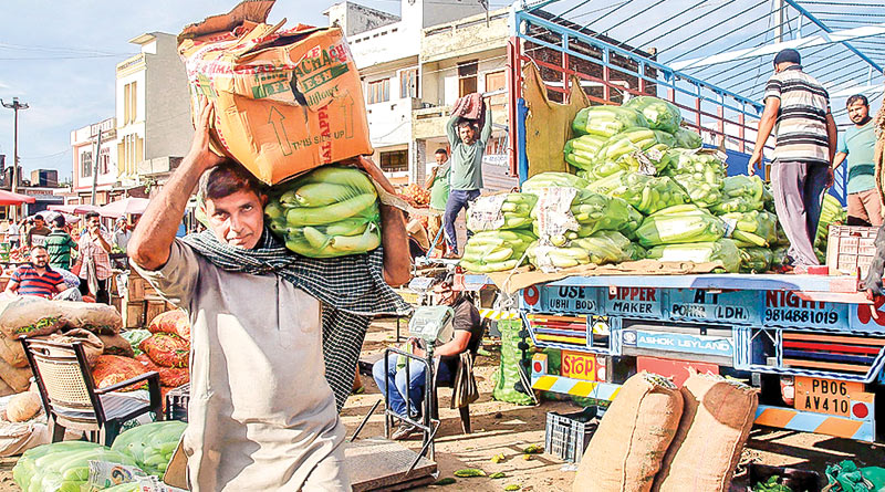 Kashmir Valley limps back to normalcy after Article 370 abrogation