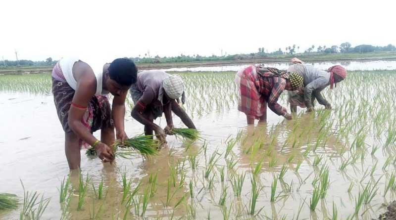 Trinamool Congress MLA reaches out to farmers ahead of polls