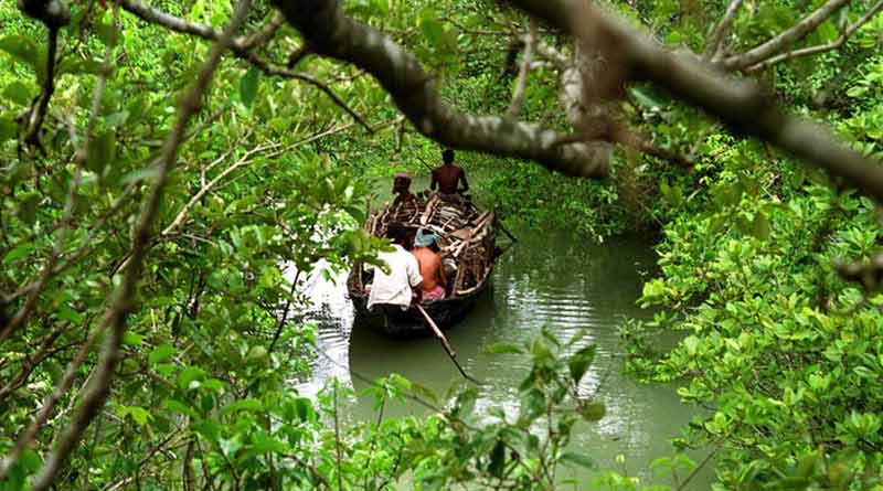 Tourist from Nadia drown into river in Sunderbans on Monday
