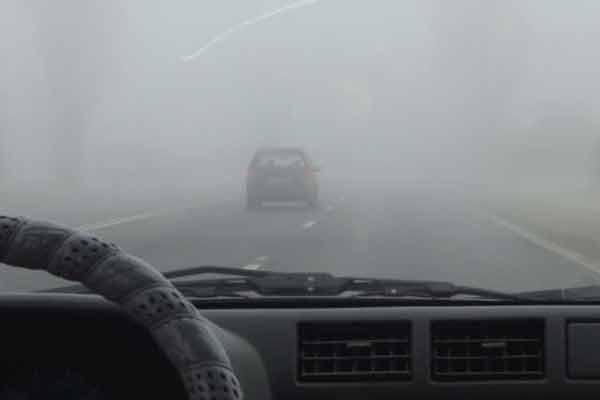 fog-car-drive2