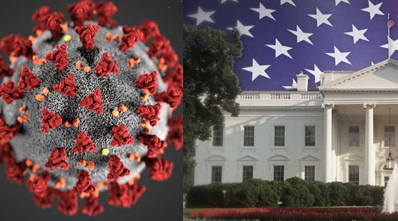 Anthony Fauci, 2 other US virus task force members in quarantine