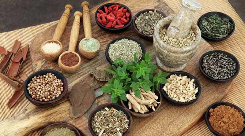 WB health department gives conditional nod to ayurvedic treatment ove COVID-19| Sangbad Pratidin