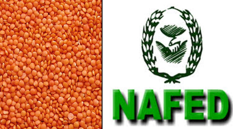 Won't able to send more Lentil, NAFED tells State Govt.