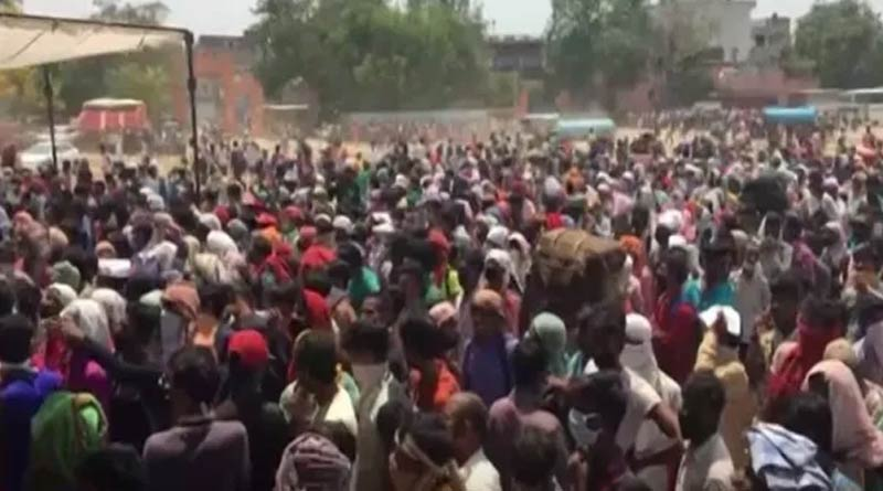 Defying lockdown 150 take out grand procession to bury dead cow in UP