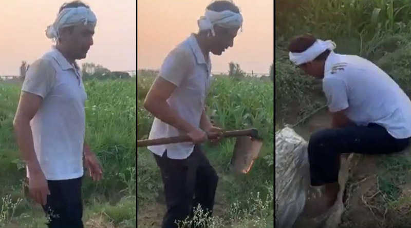 UP: Nawazuddin Siddiqui spends his day farming at hometown
