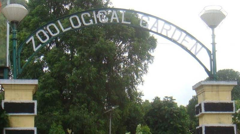 2 dead, 1 injured after being electrocuted in the alipur zoo on thursday morning