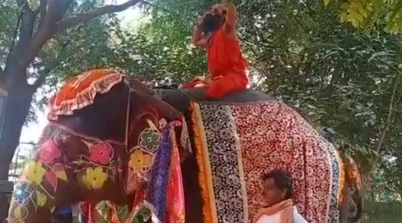Baba Ramdev falls off elephant while doing yoga, no injuries, video goes viral | Sangbad Pratidin